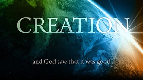 creation gospel workbook one the creation foundation the creation gospel books creation salt and light catholic media foundation