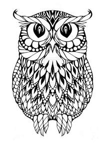 printable owl coloring pages owl coloring pages coloring pages pictures imagixs