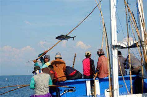 Pancing Di Makassar Cakalang Dan Tuna Mongabay Co Id