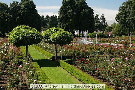 Landscape Edging Portland Oregon 24 Best Images About Jardin Catalpa On Search