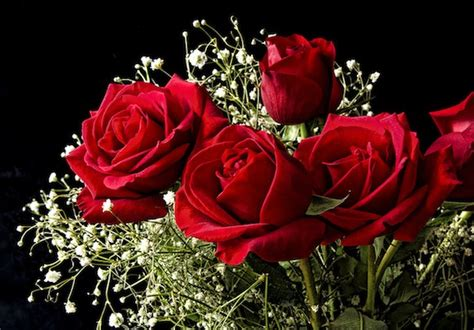 valentines day red roses it s time to start thinking beyond red roses for valentine
