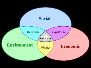 Mba 605 Business Society Environment Syllabus by Social Entrepreneurship Incorporating Sustainability Into