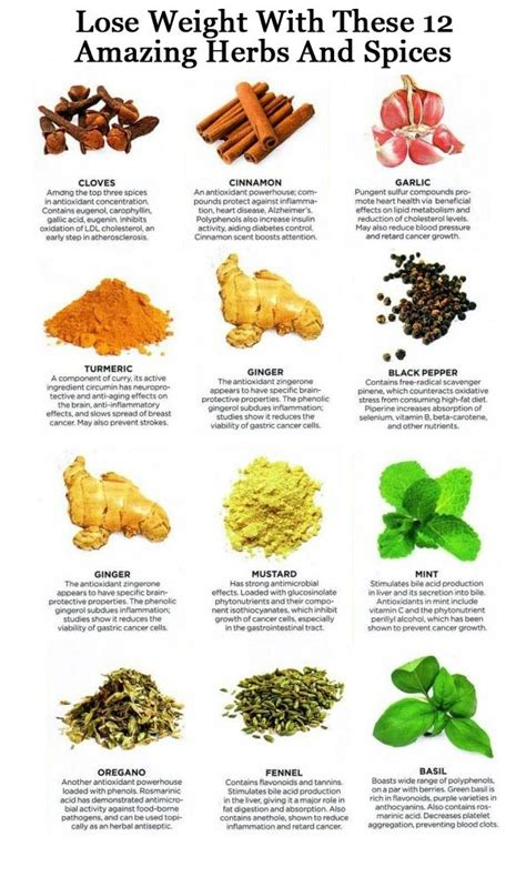 seasoning savvy how to cook with herbs spices and other flavorings books 12 amazing herbs spices to help with weight loss