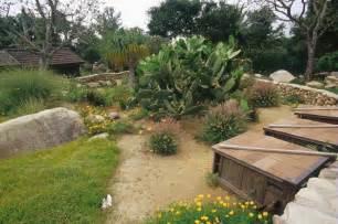 Backyard Habitat Ideas Keeping Tortoises Desert Tortoises Tortoise Habitat