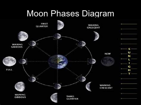 phases of the moon diagram for moon phases