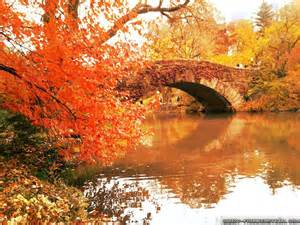 autumn in nyc wallpaper autumn in nyc wallpapers for