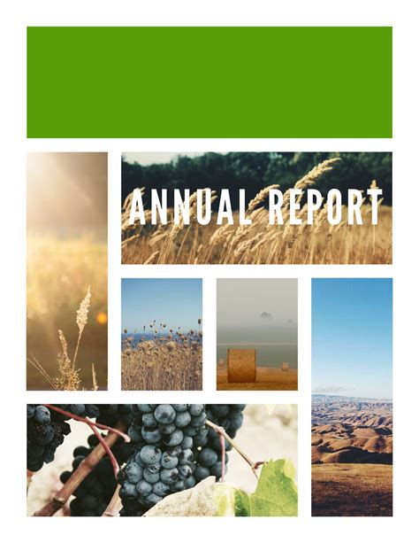 Samples Resumes by Free Annual Report Templates Amp Examples 6 Free Templates