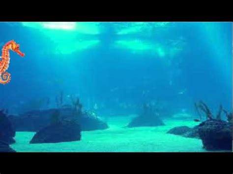 imagenes de paisajes acuaticos paisaje acuatico animado youtube