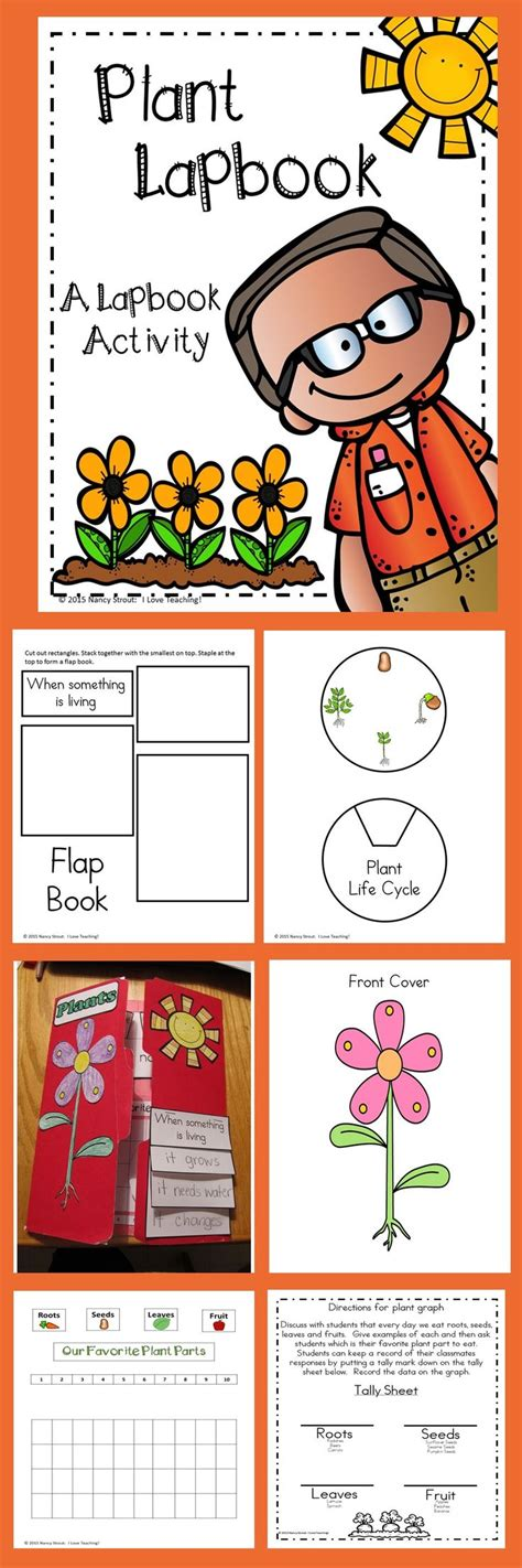libro the cabaret of plants plant activity plant lapbook for grades k 2 과학 프로젝트 원예 및 어린이