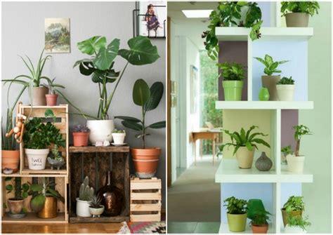decorar rincon con plantas 10 ideas para decorar tu casa con plantas y flores mym