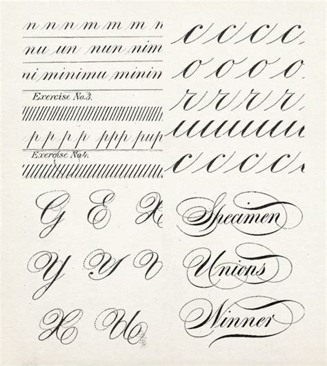 lettering basics tutorial 426 best images about beautiful writing on pinterest