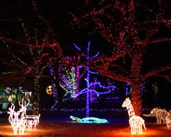 zoo lights admission zoolights utah s hogle zoo