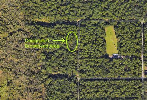 tillie fowler park 100 tillie fowler park fight invasive species at