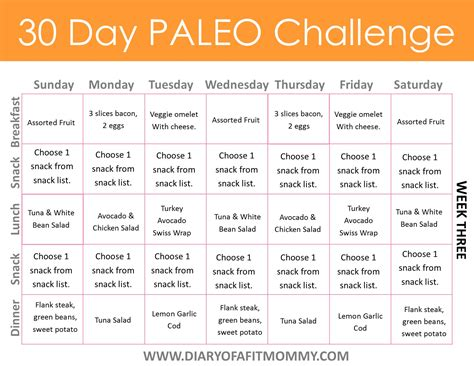 30 Day Detox Diet Fitness Magazine by Diary Of A Fit Mommy30 Day Paleo Challenge Diary Of A