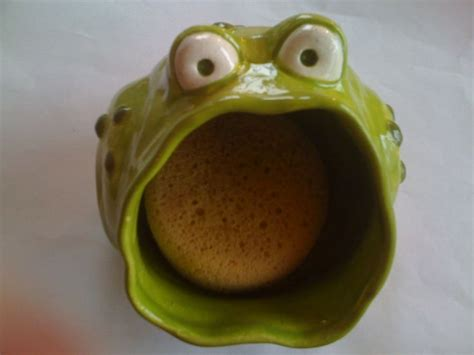 Vintage Canisters For Kitchen pinch pot creature idea kelly s wonderful frog sponge
