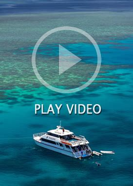 Beautiful Places In The Us by Snorkel Amp Scuba Dive The Great Barrier Reef With Poseidon