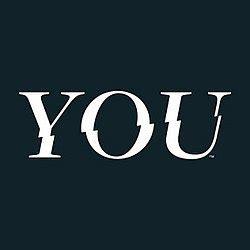you (tv series) wikipedia