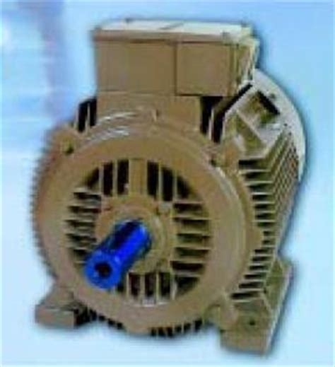 3 phase tefc induction motor tefc 3 phase squirrel cage induction motors in bhiwandi maharashtra india vashi electricals