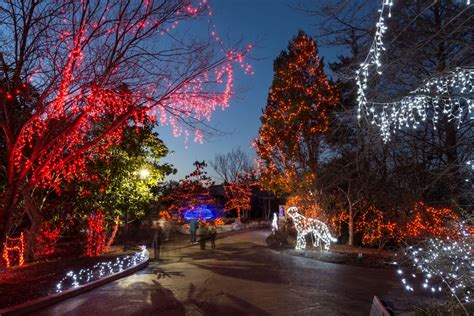 are there christmas lights at the cleveland zoo this year collection of cleveland zoo lights tree decoration ideas
