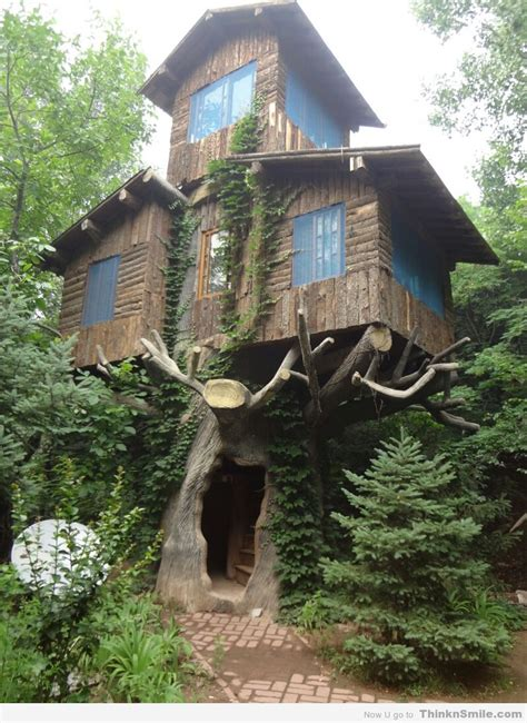awesome tree houses amazing treehouse thinknsmile com
