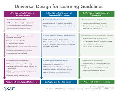 udl lesson plan template udl implementation a tale of four districts national