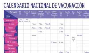 Calendario B Nacional 2015 Portal Ministerio De Salud De La Nacion