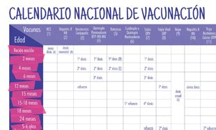 calendario de vacunacion de ministerio de salud 2016 portal del ministerio de salud de la nacion
