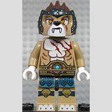 Lion Claw Marks   679 x 1132 jpeg 155kB