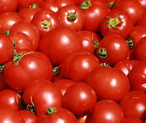 Shelf Of Tomato chester legion auxiliary hosts state delegate neighbors services seeks volunteers