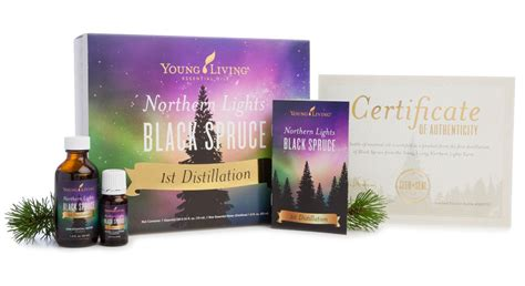 northern lights black spruce essential oil northern lights black spruce essential oil young living blog