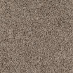 Mohawk Carpet   Intelligent Style (1I50)   Color Dry Twig