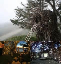 Beautiful tree houses dream houses curatehub