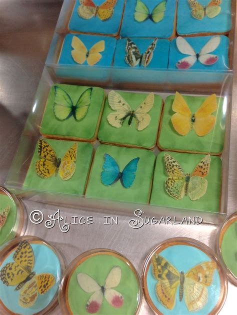 butterfly cookies made with wafer paper 109 best alice in sugarland images on pinterest alice