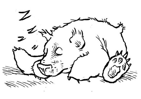 sleeping bear coloring pages to print sleeping bear coloring pages printable coloring pages