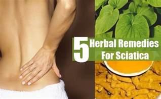 home remedies for sciatica 5 sciatica herbal remedies treatments cure