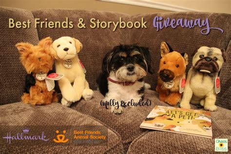 best friends animal society best friends animal society hallmark giveaway