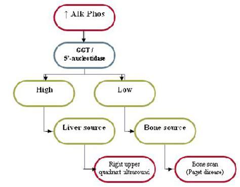 asymptomatic alkaline phosphatase elevation! usmle forums