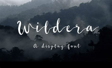 best handwriting fonts 25 free cursive handwriting fonts and calligraphy scripts