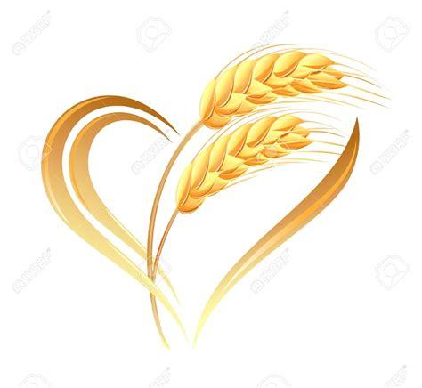 clipart immagini spiga di grano clipart