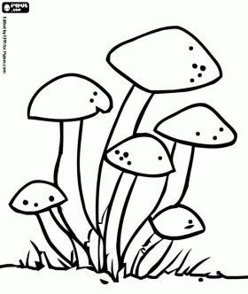 imagenes de hongos faciles para dibujar para colorear hongos colorear im 225 genes