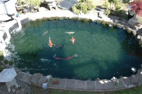 How To Make A Koi Pond In Your Backyard by 13 Diy Awesome Backyard Pond Ideas For All Budgets Top Inspirations
