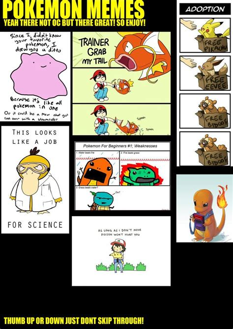 17 best images about pokemon memes on pinterest pokemon