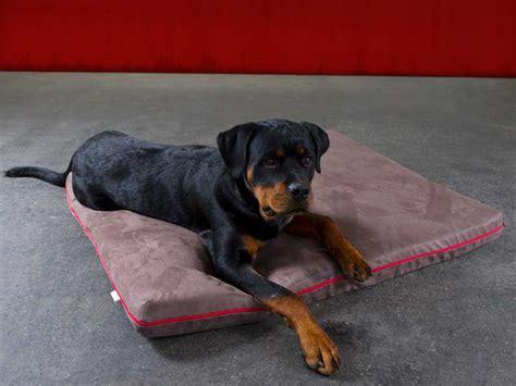 materasso per cani materassi per cani per riposarsi in posizione rilassata e
