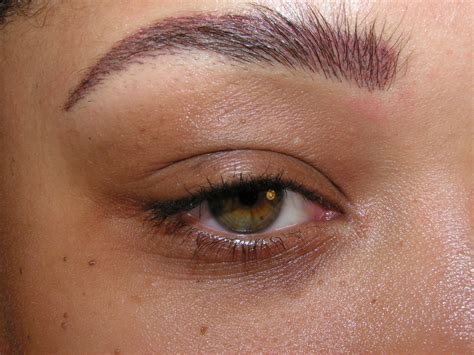 removable eyebrow tattoo best permanent makeup artist in michigan makeup vidalondon