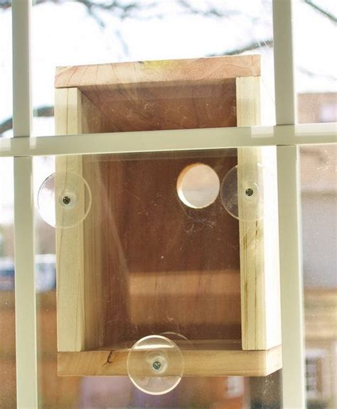 window bird house plans diy bird feeder pole woodworking projects plans
