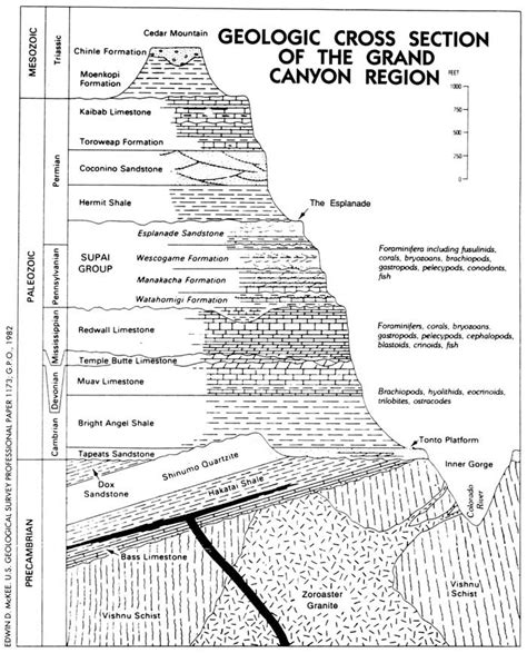 section formation river running part 2