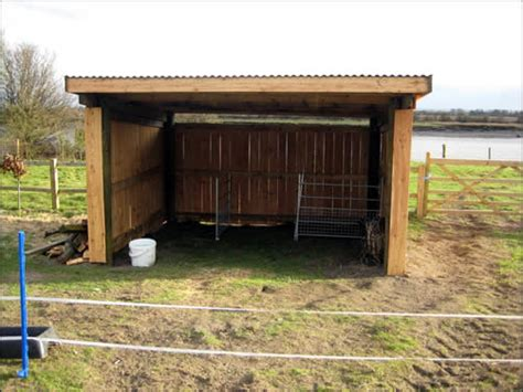 image gallery sheep shelter