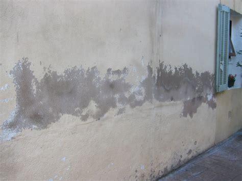 mur humide traitement traitement mur humide cdaf votre expert en traitement pour mur humide