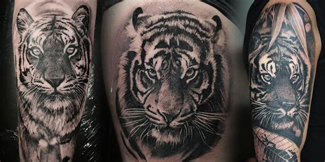 realistic tiger tattoo archives angelique grimm