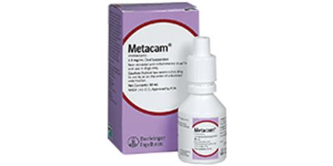 meloxicam side effects dogs metacam